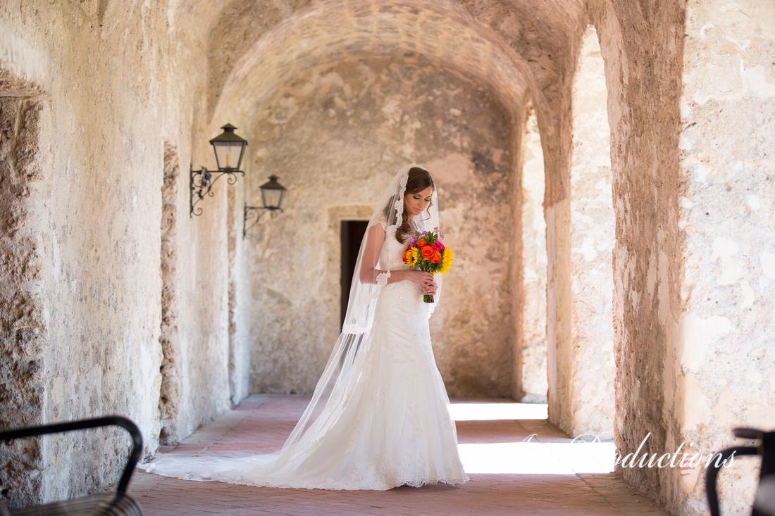 Framed bridal portrait