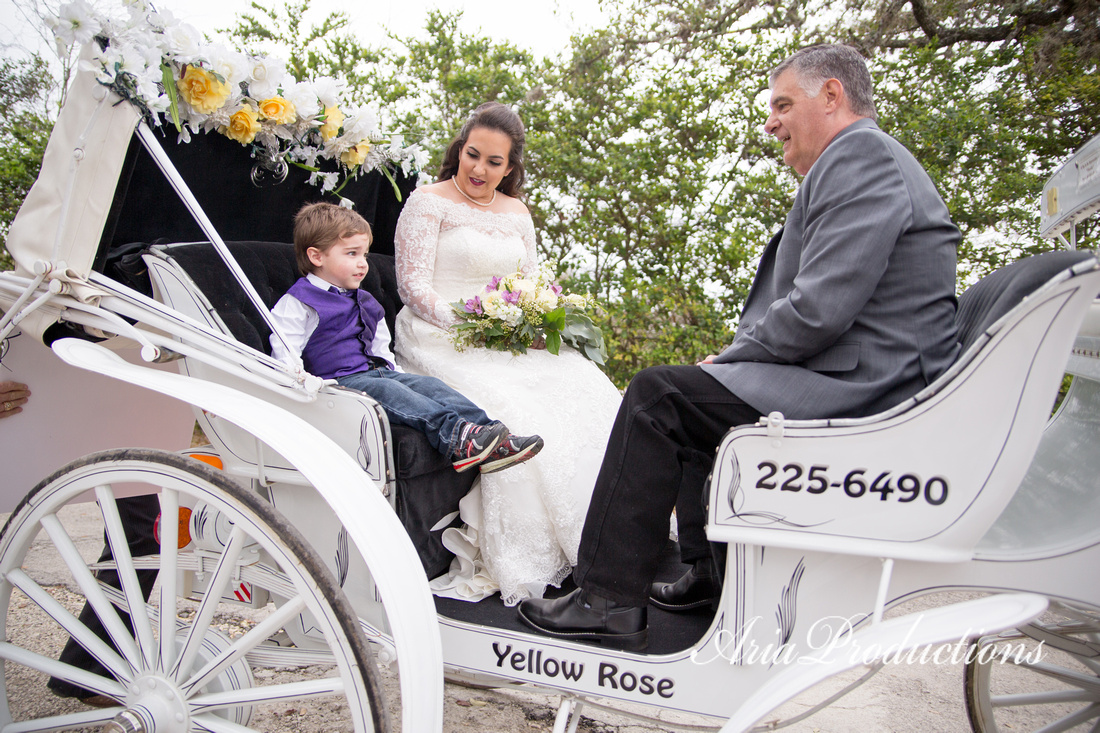 yellow rose carriage